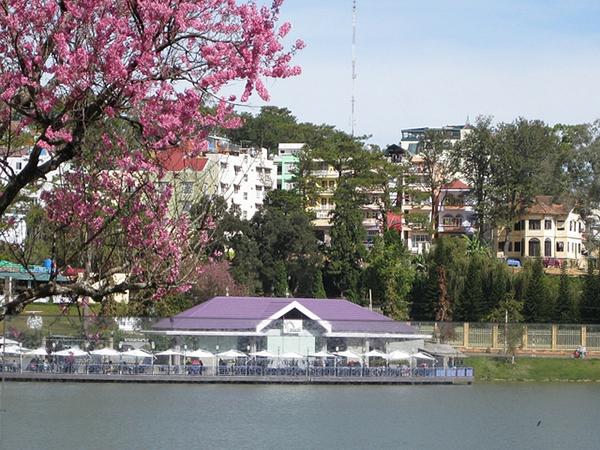 Cách tìm phòng khách sạn nhà nghỉ giá rẻ tại Đà Lạt