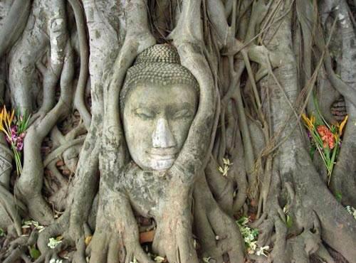 Bạn đã ghé thăm những ngôi chùa này khi đi du lich Thái Lan