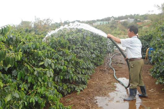 Cà phê cần lượng nước như thế nào là đúng?