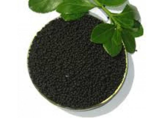 Vai trò của axit humic đối với cây trồng