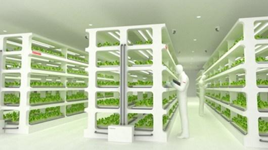 Vài mô hình nông nghiệp công nghệ cao cho 2017
